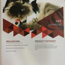Product beschrijving en statement